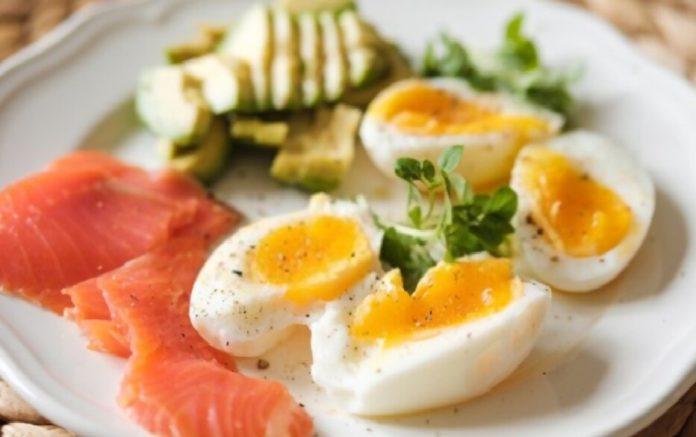 egg diet effective